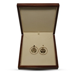 Hoop Earings in Collector's Box